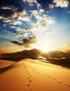 Притча «Двое впустыне»