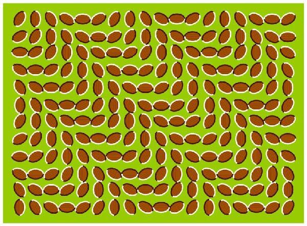 Иллюзия пульсации